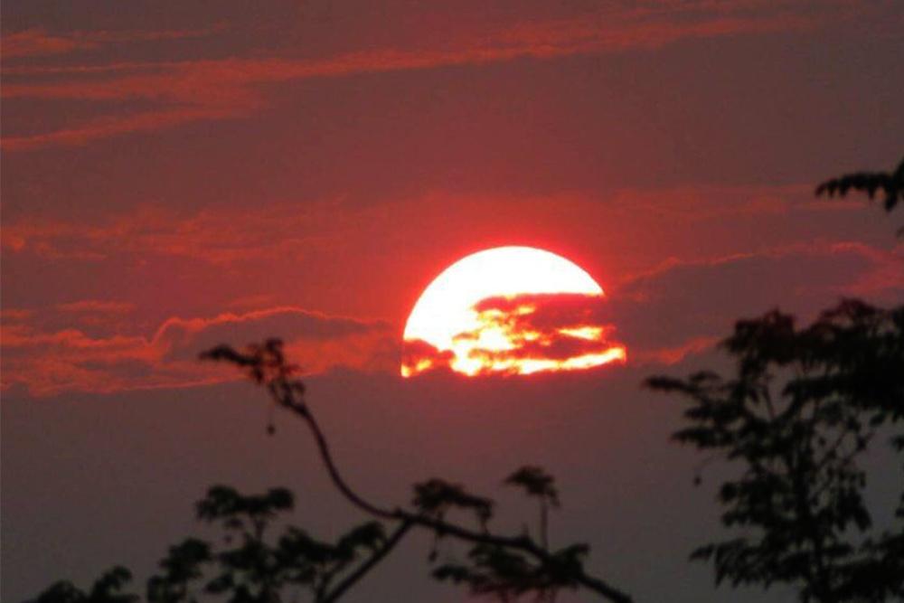 又见夕阳红